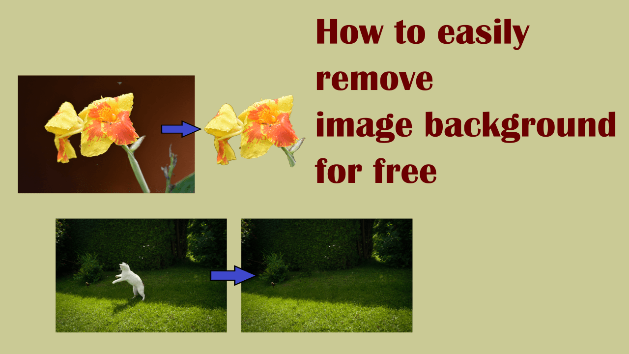 How to easily remove image background for free